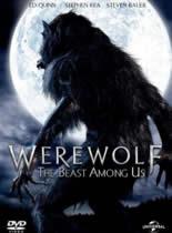 狼人:身边野兽