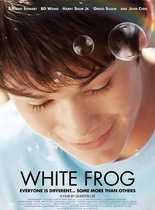 白蛙/白色蛙