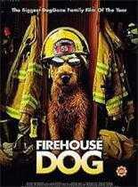 消防犬/我家也有消防狗