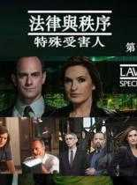 法律与秩序:特殊受害人 第十二季