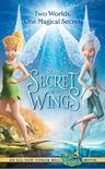 小叮当:羽翼之谜